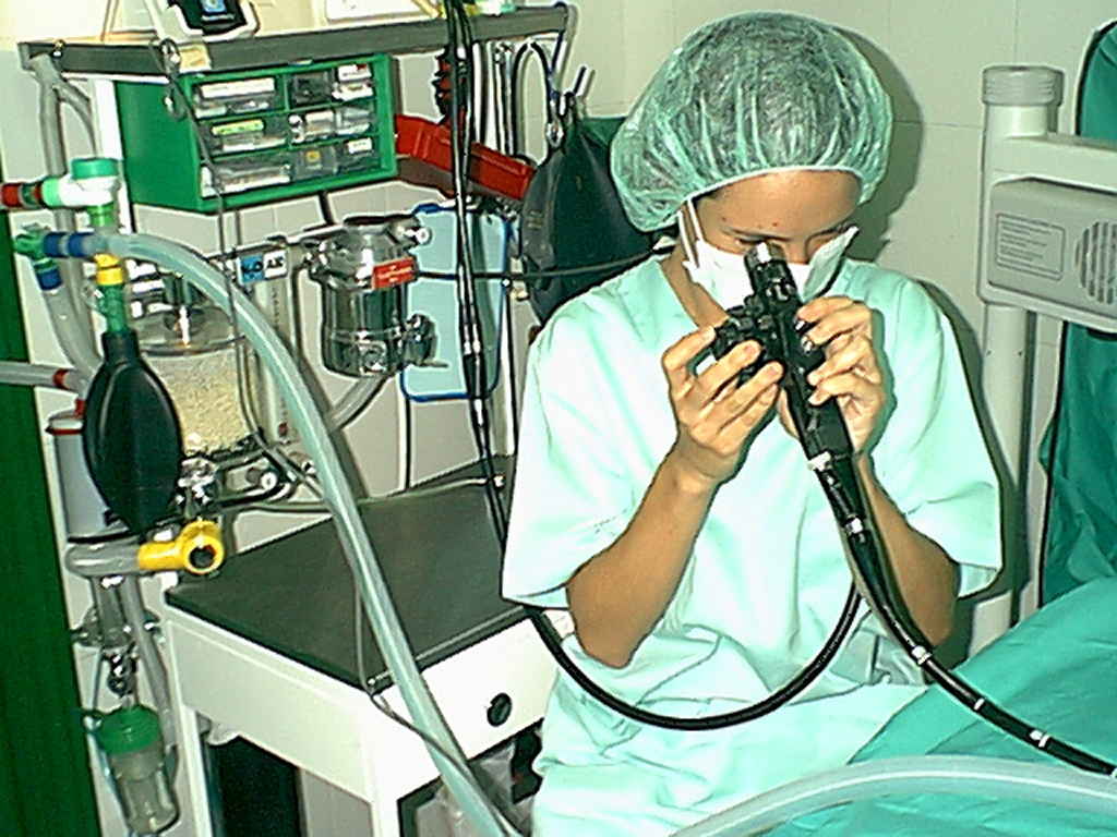 Fibroendoscopia