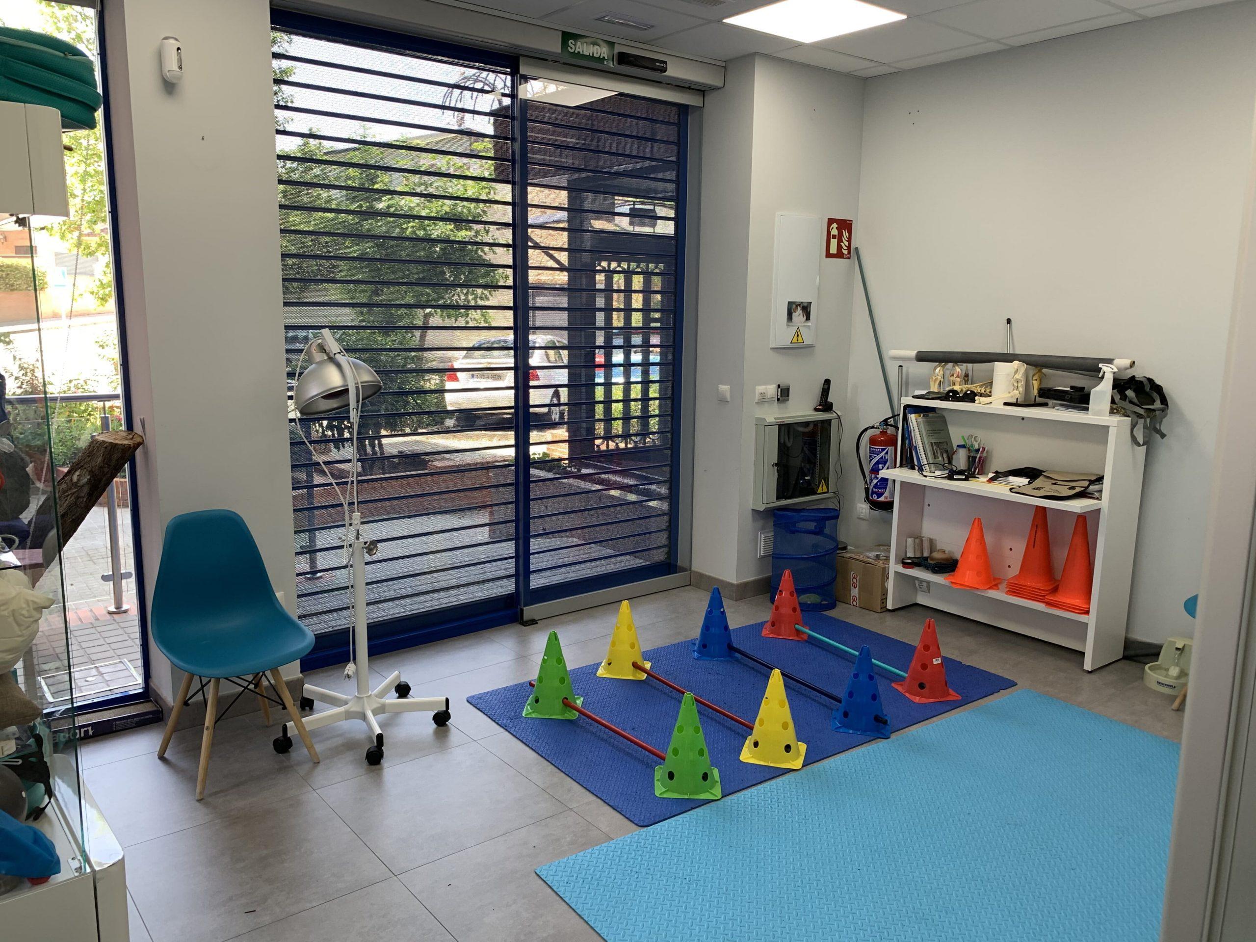 Rehabilitación veterinaria